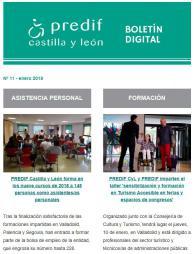 Boletín nº 11 - enero 2019