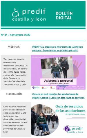 Boletín nº 31 - noviembre 2020